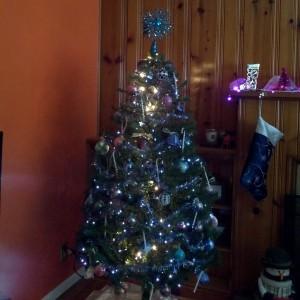 Christmas 2013 027